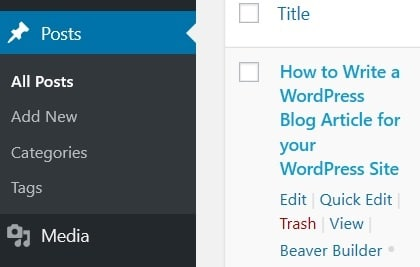 How to Write a WordPress Blog Article for your WordPress Site