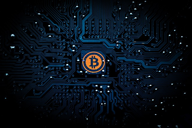 5 Top Cryptocurrency Wallets for Bitcoin