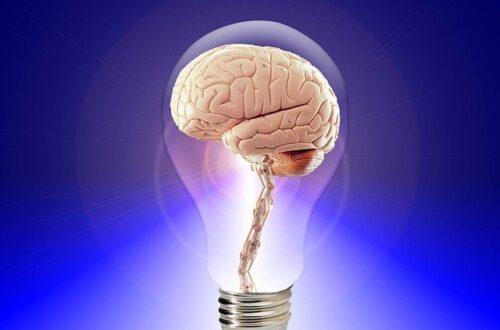 brain math game